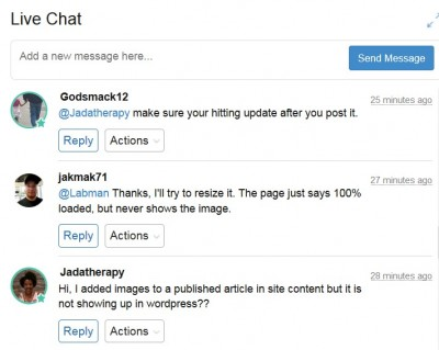 sample from live chat