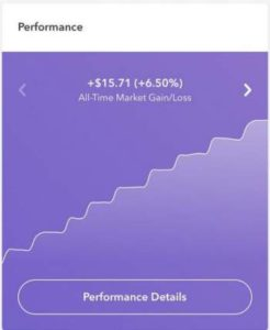 performance chart from Acorns App